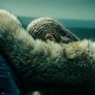 HBO to Air Encore Presentation of Beyonce's LEMONADE, 6/18