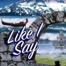 BWW Review: LIKE I SAY - A Script in Search of a Purpose at convergence-continuum