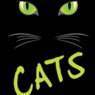 Columbus Children's Theatre to Stage CATS This May