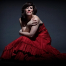 Met Opera Star Sondra Radvanovsky to Perform in Annual Gala at Palm Beach Opera, 2/15