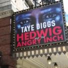 Up on the Marquee: HEDWIG AND THE ANGRY INCH with Taye Diggs