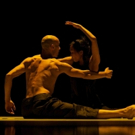 Peggy Baker Dance Projects to Present World Premiere Project, PHASE SPACE, 1/22/16