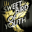 The Gallery Players presents SWEET BIRD OF YOUTH