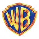 Roni Patel Promoted to SVP for Warner Bros International Television Distribution