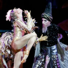 BWW Review: American Ballet Theatre's THE GOLDEN COCKEREL