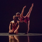 36th Annual Battery Dance Festival Announces August Lineup