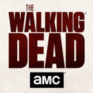 AMC's THE WALKING DEAD is No. 1 Show on TV for Record-Breaking Fifth Consecutive Year