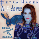 The Stooges' James Williamson Premieres New Single with Petra Haden