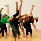 BWW Review: BODYBUSINESS by Sydnie L. Mosley Dances
