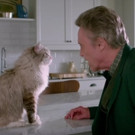VIDEO: First Look - Kevin Spacey Stars as a Businessman Turned Into a Cat in NINE LIVES