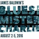 BWW Review: Searing BLUES FOR MISTER CHARLIE from The Williams Project