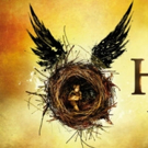 Ticket Resale Con Man Used HARRY POTTER AND THE CURSED CHILD to Steal $7.9 Million