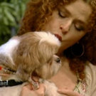 DVR Alert: Bernadette Peters to Give Shelter Dog Makeovers on LIVE, 7/27
