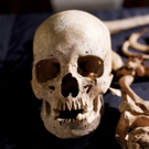 Origins of the Vampire Legend Set for THIRTEEN's Secrets of the Dead, 10/27