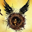 Producers Say HARRY POTTER AND THE CURSED CHILD Attracting 50% New Theatre-Goers