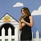 VIDEO: Stephen Colbert & Aubrey Plaza Present Their Own Dog Rescue Ad