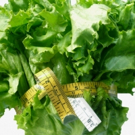 BWW Blog: Defining DIETS