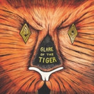 M.O.D. Technologies Releases Adam Rudolph's Moving Pictures GALRE OF THE TIGER