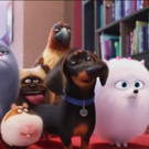 VIDEO: First Look - Kevin Hart & More Lend Their Voices to THE SECRET LIFE OF PETS