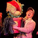 BWW Review: LITTLE SHOP OF HORRORS at Platte Valley Players