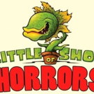 LITTLE SHOP OF HORRORS to Bring Twisted Humor to City Theatre
