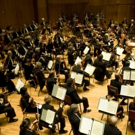 Baltimore Symphony Orchestra Announces Addition of Four New Musicians