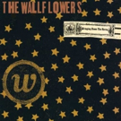 UMe Celebrates 20th Anniversary of the Wallflowers' with First-Ever Two-LP Vinyl Reissue