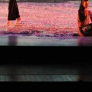 Shen Wei Dance Art Comes to Music Hall This Weekend