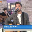 VIDEO: Niall Horan Performs New Solo Song 'This Town' on TODAY