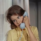 It's Time to Telephone Your Best Friend and Celebrate BYE BYE BIRDIE!