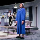 Photo Flash: First Look at TheatreWorks New Milford's TALE OF THE ALLERGIST'S WIFE