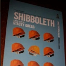 SHIBBOLETH - A World Premiere at Dublin's Abbey Theatre