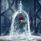 PHOTO: Disney Shares 9 Enchanting Photos from BEAUTY AND THE BEAST!