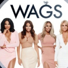 E! Orders Seasons for Reality Series WAGS & Spin-Off WAGS MIAMI, Airing in 2017
