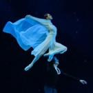 BWW Review: MARIINSKY BALLET Pays a Tribute to Maya Plisetskaya at BAM
