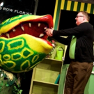 BWW Review: The City Theatre Closes Season By Opening a LITTLE SHOP OF HORRORS Photos