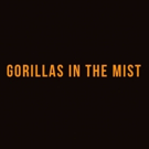 Dian Fossey's GORILLAS IN THE MIST to Be Adapted to New Stage Play Featuring Jim Henson Puppetry