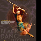 IABD Presents 28th Annual International Dance Conference and Festival, 1/20