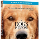 A DOG'S PURPOSE Coming to Digital, Blu-ray, DVD & On Demand This Spring