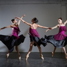 FJK Dance Returns to New York, 11/17