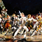 BWW Review: CATS at the Civic Theatre