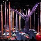 CAC to Present PearlDamour and Shawn Hall's HOW TO BUILD A FOREST This Month