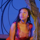 BWW Review: THE LITTLE MERMAID Ebbs and Swells at the Rose Theater