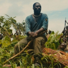 Netflix's BEASTS OF NO NATION Wins 3 Awards at Capri, Hollywood International Film Festival