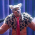 VIDEO: CONAN Wonders Why No One's Paying Attention to Trump-Themed CATS Revival