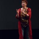 Photo Flash: Donna McKechnie & Tony Sheldon Star in ICON Photos