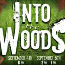 Dare to Defy Productions Presents INTO THE WOODS This Weekend