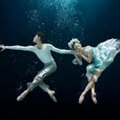 Miami City Ballet Presents Open Barre: Dance + Drama Featuring Excerpts From A MIDSUMMER NIGHT'S DREAM, 2/5