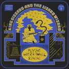 King Gizzard and the Lizard Wizard Reveal New Song 'Nuclear Fusion'