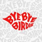 NBC Delays Production of BYE BYE BIRDIE LIVE Until 2018